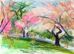 Pastel Sketch by Nancy Wait