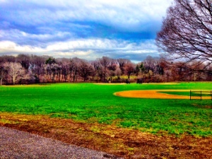 Playing field, Long Meadow, Prospect Park