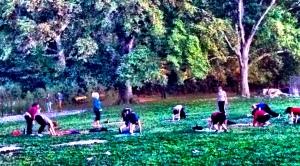Yoga in Prospect Park